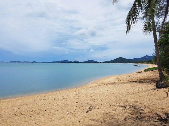 Coco Palm Beach Resort: IMG_20171002_134340_592_large.jpg