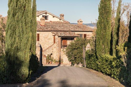 Monteroni d'Arbia, Italien: veduta dell appartamento dal viale