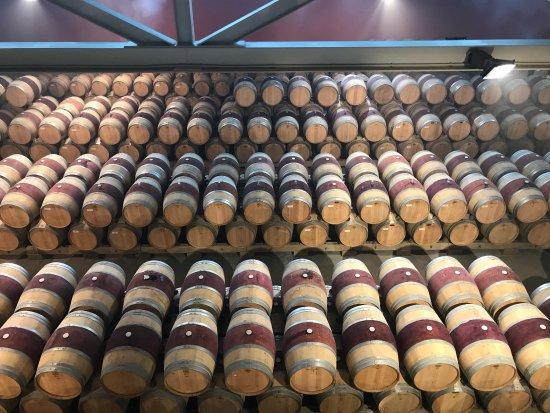 Haro, Spain: Mejor experiencia en un viñedo!!!!