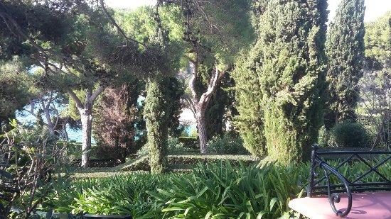 Jardin santa clotilde picture of jardines de santa for Jardines de santa clotilde