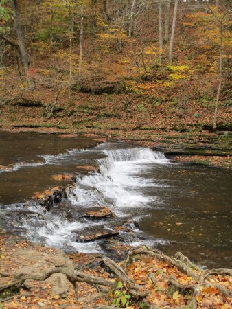 Lawrenceburg, TN: Be sure to walk the trail at the waterfall, it is beautiful!!