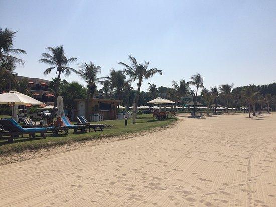JA Palm Tree Court: photo2.jpg