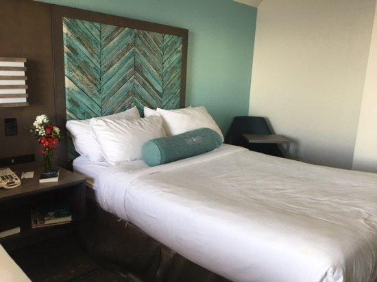 The Inn at Pine Knoll Shores Photo