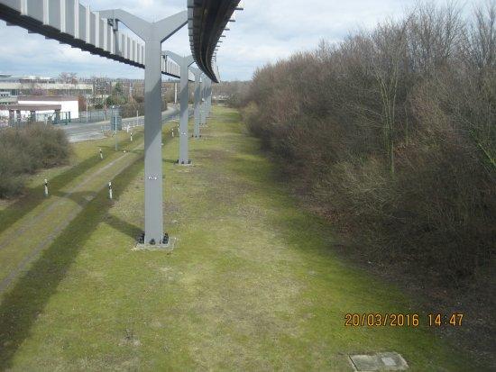 Dusseldorf airport visitor's terraces: Внизу на траве - натурально живут зхайцы