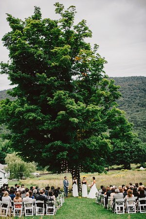 Roxbury, NY: The Wedding Tree is one of the most popular spots to get married