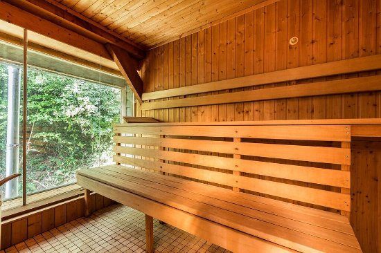 Dittisham, UK: Sauna overlooking the stream