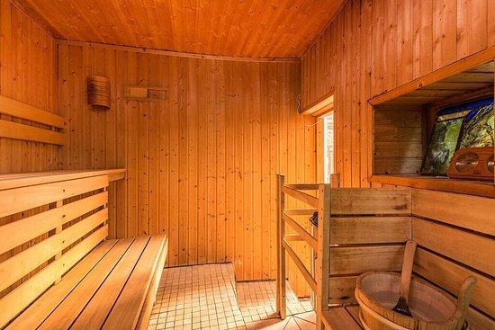 Dittisham, UK: Sauna
