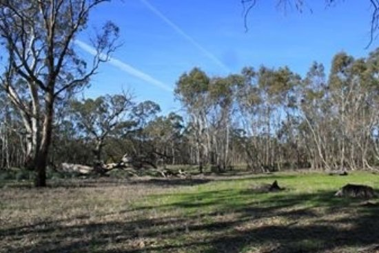 Kaniva, Austrália: Moree Reserve