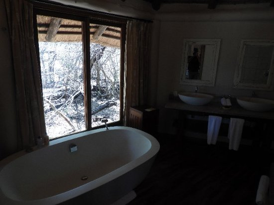 Ulusaba Safari Lodge 이미지