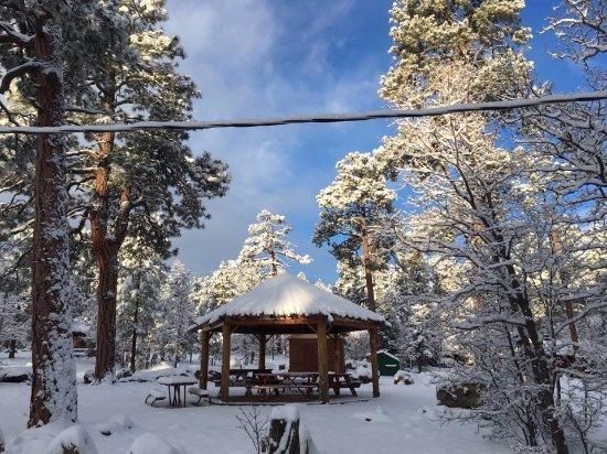 Foto de Mormon Lake