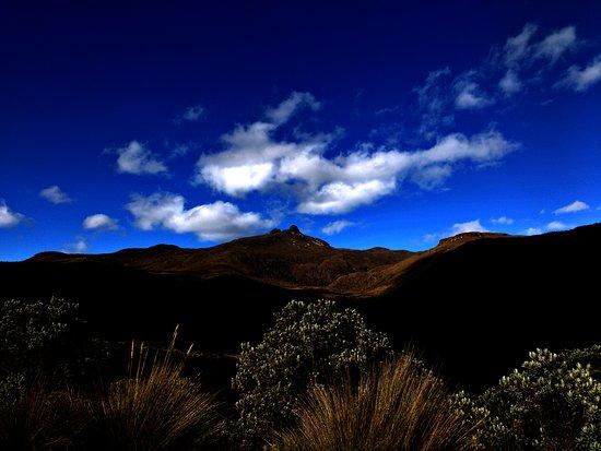 Risaralda, Colombia: La naturaleza nos acompaña en cada parte de nuestro maravilloso recorrido