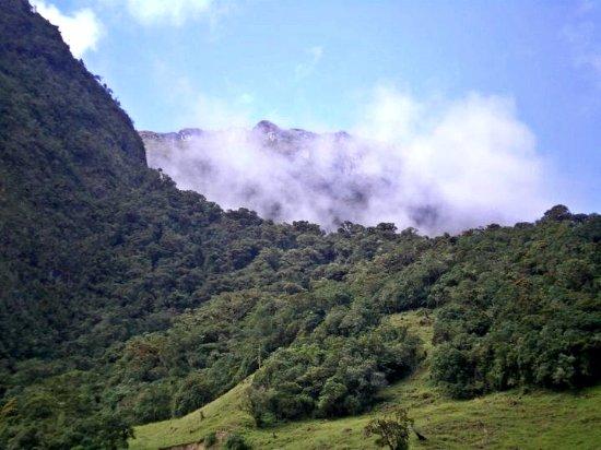 Risaralda, Colombia: Montaña de los Andes