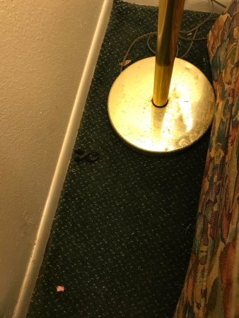 Magic Castle Inn and Suites : photo7.jpg