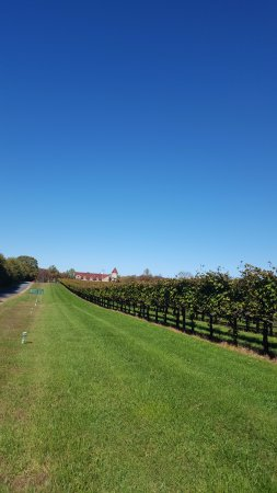 Gordonsville, VA: Grounds driving up