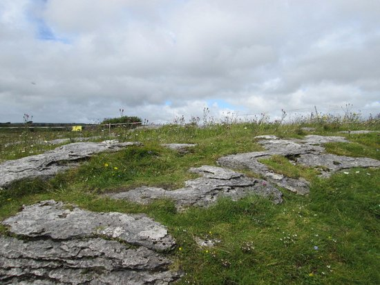 Corofin, Ireland: Views at The Burren