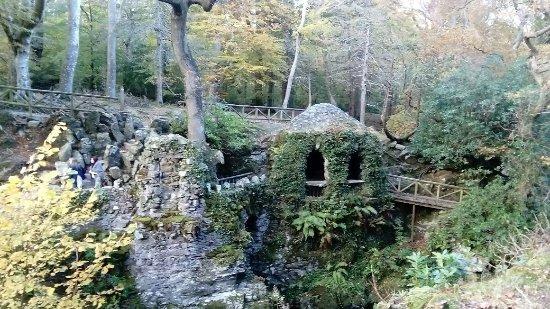 Tollymore Forest Park: antiche rovine