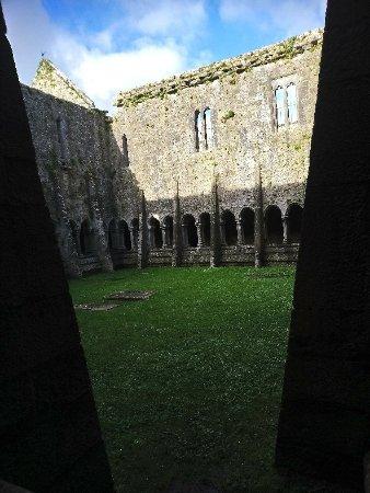 Quin, Ирландия: DSC_1584_large.jpg