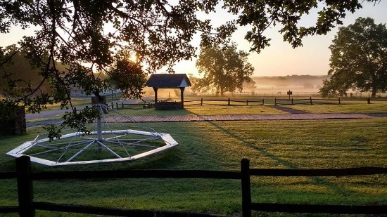 Gainesville, Τέξας: Early mornings are some of the best times at Lone Oak!