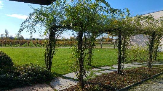 San Martino al Tagliamento, Włochy: Amazing tour and tasting at Pitars