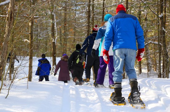 Severn Bridge, Canada: Snowshoeing through the Forest