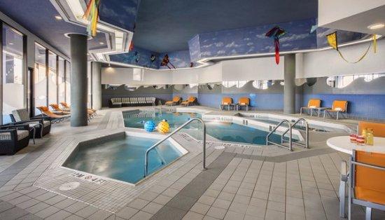 هوليداي إن وينيبيج ساوث: Indoor Pool