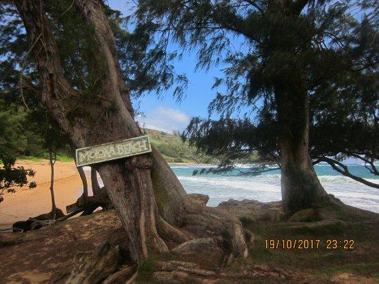Kauai Photo Tours: Another lovely beach
