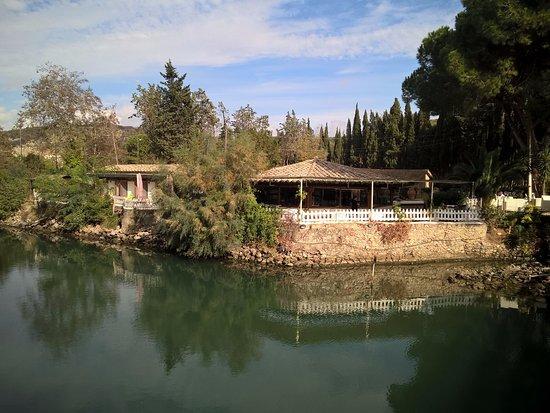 Ansedonia, İtalya: Ristorante affacciato sul canale