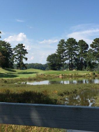 Cobblestone Golf Course: Beautiful view