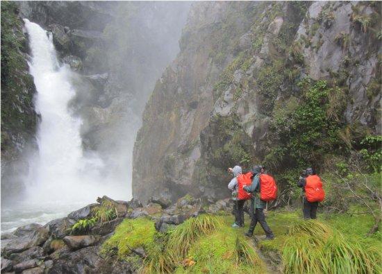 Fiordland National Park, Nya Zeeland: Hidden Falls Day 1