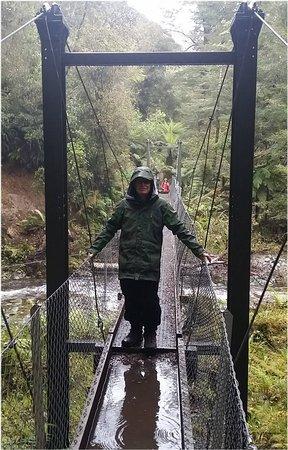 Fiordland National Park, Nya Zeeland: Bridge crossing Day 1