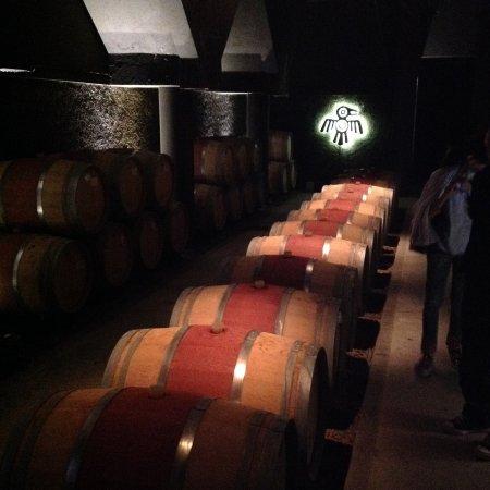 Kaiken Winery: bodega interior