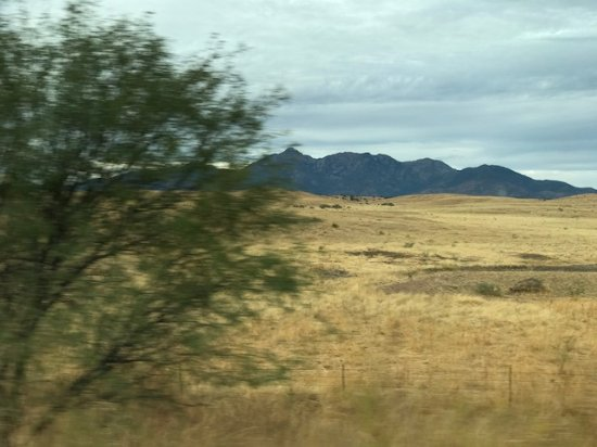 Sonoita, AZ: Mountains in the background