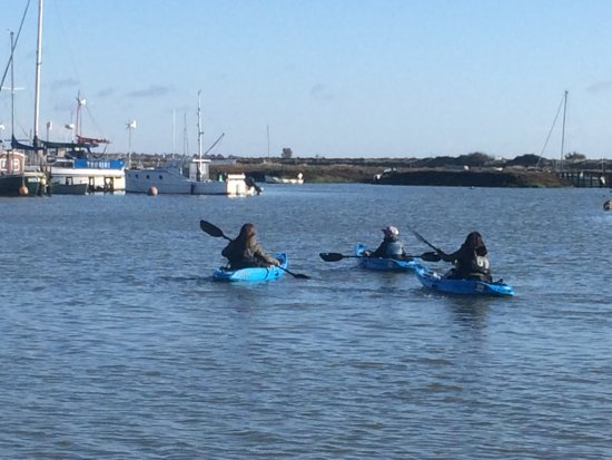Outdoor Hire Centre: Sea Kayaking in Tollesbury (Liar / Essex)