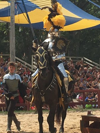 Kenosha, WI: Black and Gold Knight
