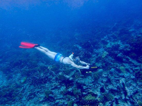 Savaneta, Aruba: photo0.jpg