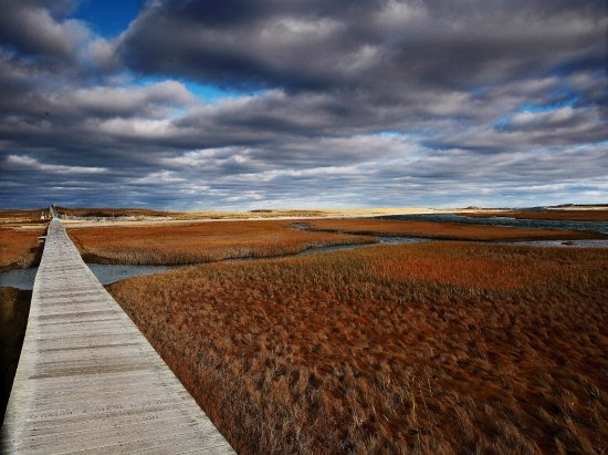 Sandwich Boardwalk, Cape Cod (11/16)