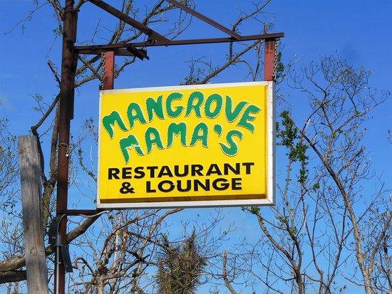 Mangrove Mama's 이미지