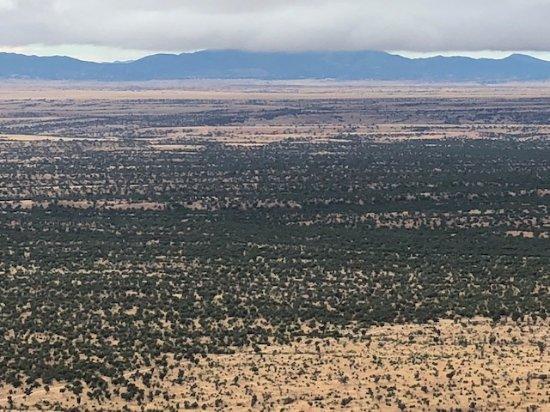 Hereford, AZ: Coronado Forest