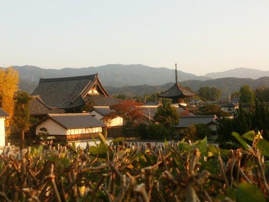 Taishi-cho, Japón: IMG_20171109_162256_large.jpg