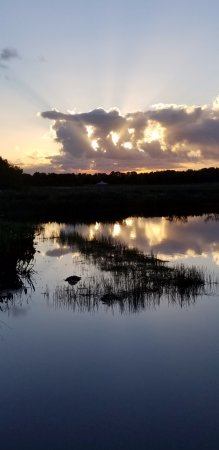 Wakodahatchee Wetlands : sunset