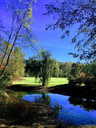 Millboro, VA: photo6.jpg