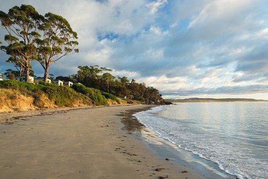 Sanibel Island Hotels: Swansea Beach Chalets $100 ($̶1̶0̶8̶)