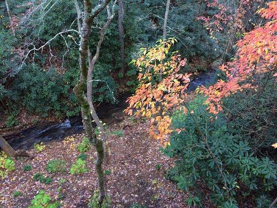 Spruce Pine, Karolina Północna: photo1.jpg
