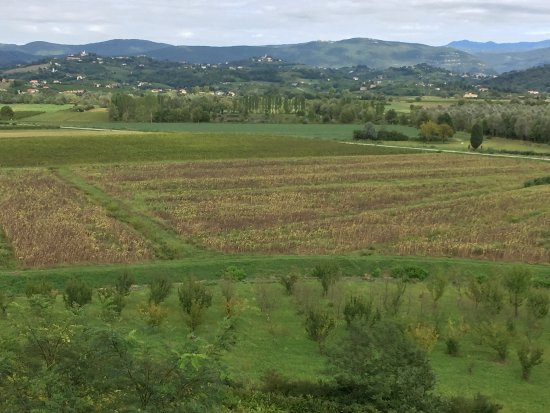 Capriva del Friuli, İtalya: Valley to the east. Vineyards and orchards.