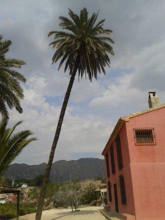 Blanca, España: Casa Ramoncico