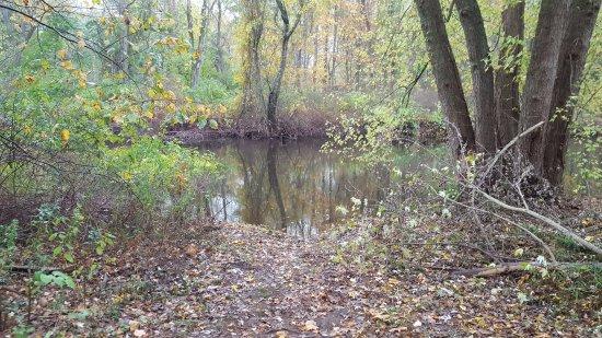 North Haven, CT: Canoe Launch