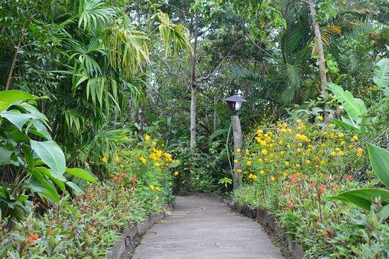 Hotel Claro de Luna: Jardines