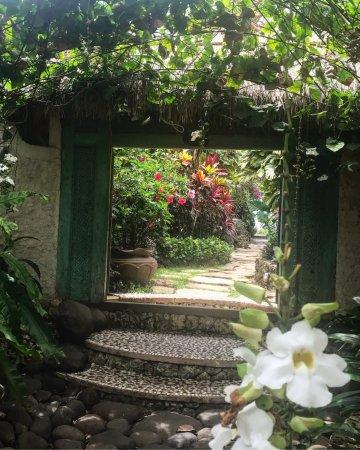 The Temple Lodge: photo4.jpg