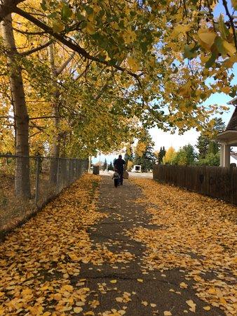 Stony Plain, Canadá: photo0.jpg
