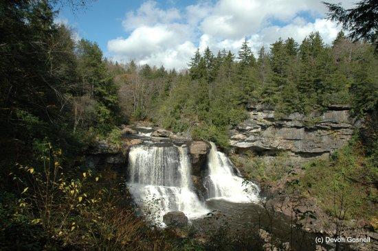 Davis, WV: Blackwater Falls